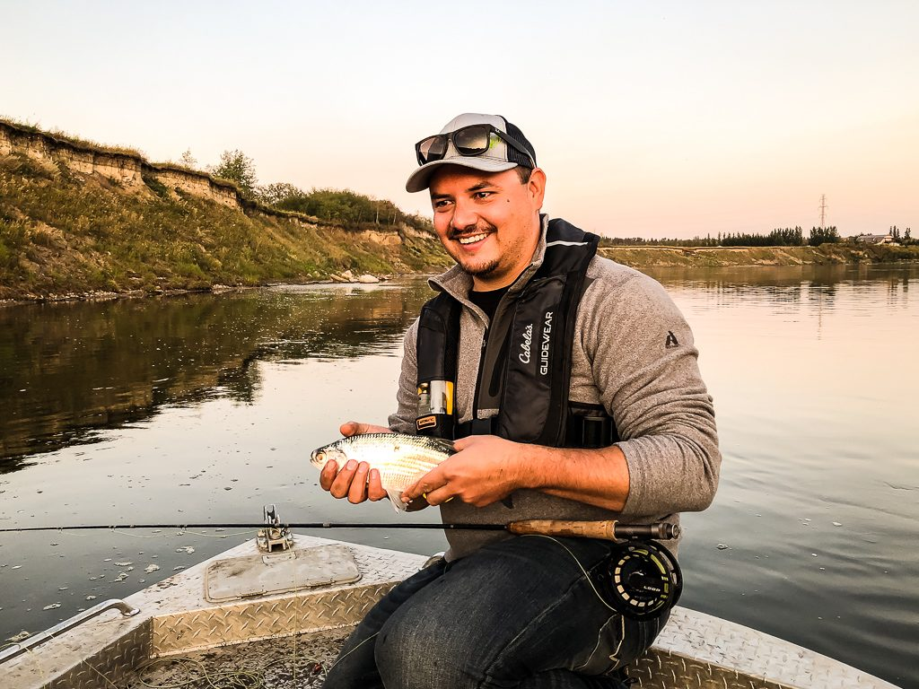 North saskatchewan river goldeye fly fishing