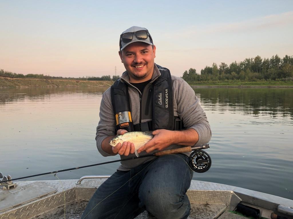 a north saskatchewan river goldeye on a fly rod